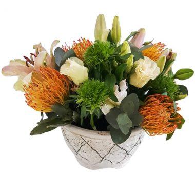 Clay Vase arrangement