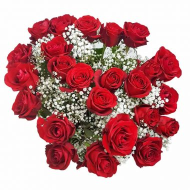 Romantic-Red-Roses-Gyp