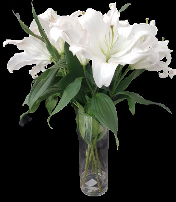 White orientals in a vase